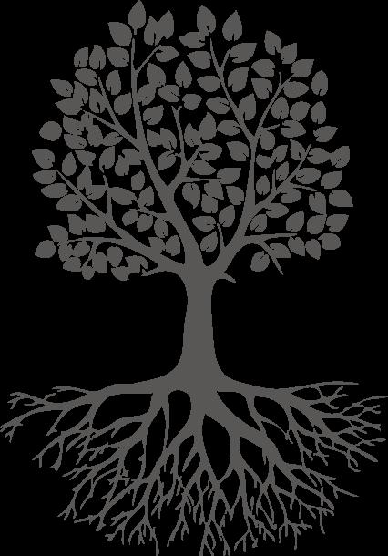 Baum200