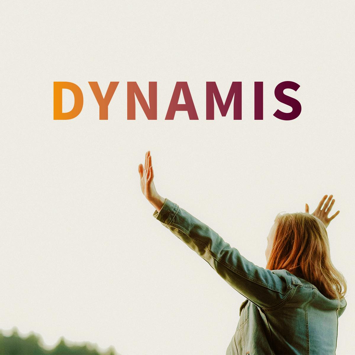 DYNAMIS | Konferenz